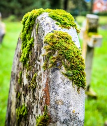 Moss covered grave stone