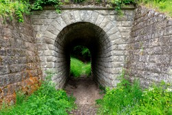 Moss-covered stone tunnel in the forest