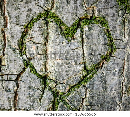 Moss-grown heart on cracked tree bark. Symbol of true love -  in sickness and in health, in good times and in bad, and in joy as well as in sorrow. - stock photo