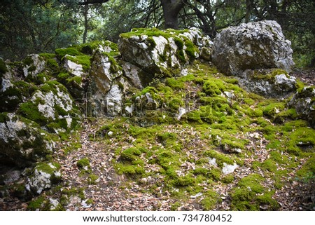 Moss-grown hill with stones