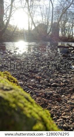 Moss on Rock #1280076295