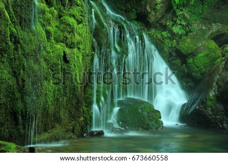 moss valley with waterfall  #673660558