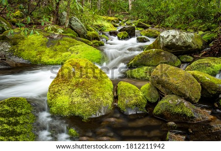 Mossy rocks in river creek water. Forest river creek mossy rocks. Mossy rocks in creek water. Forest mossy rocks in cold creek