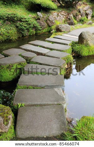 Mossy stepping stones in water
