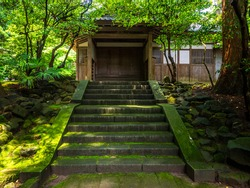 Mossy steps approaching to a wooden palace (Yahiko shrine, Yahiko, Niigata, Japan)