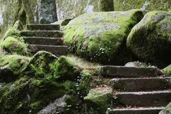 Mossy stones and stairs, Monte de Santa Catarina, Guimaraes