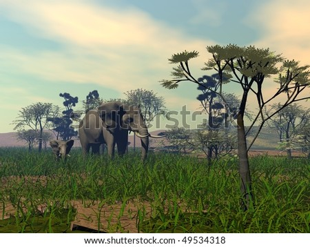 mother and child elephants in savanna