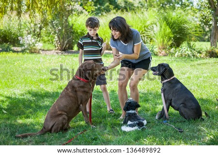 Mother and child training dogs with treats at a park