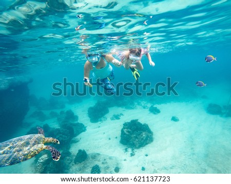 Mother and her little daughter doing snorkeling. Next floating turtle. Koh Tao, Thailand.