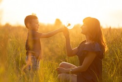 mother and her son holding a huge dandelion and blowing it. family walk in the field at sunset. horizontal view
