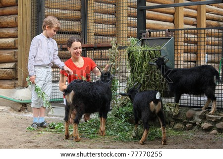Mother and son feed with mountain goats branches in zoological garden, focus on mother