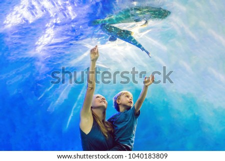 Mother and son looking at fish in a tunnel aquarium