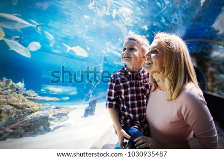 Mother and son watching sea life in oceanarium