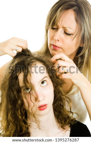 Mother checking child's head for lice - louse on head, curly hairs - white background