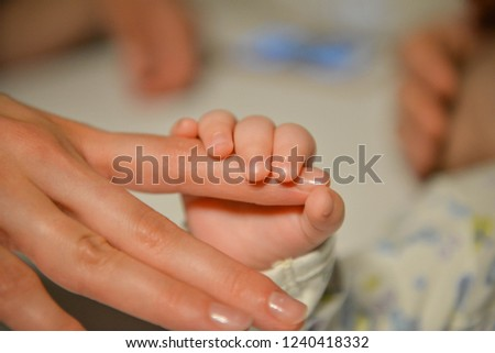 Mother holding newborn tiny and soft skin baby feet in both of hands. Love and affection concept. Maternity and health theme. #1240418332