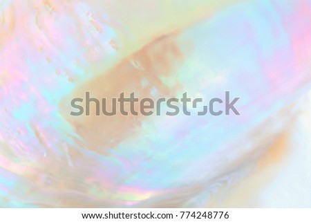 Mother of pearl sea shell close up background