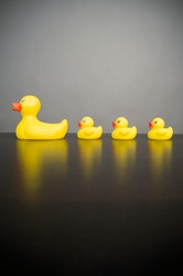 Mother rubber ducky and three rubber ducklings against a plain background.