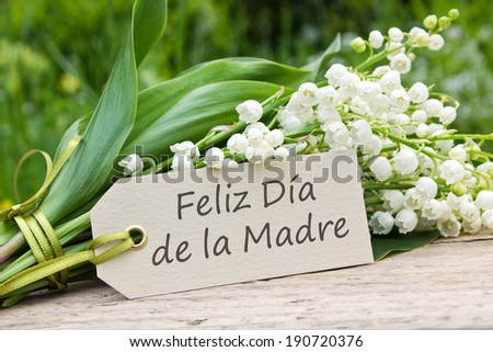 Mother`s day card with Lily of the valley/Happy Mother`s Day/spanish