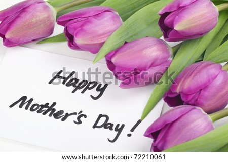 Mother\'s Day Concept-- Purple tulips with card on white background