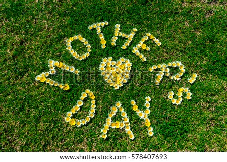 Mother's Day gift card, text written with yellow and white daisy flowers in green fresh grass. #578407693