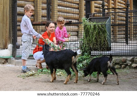 Mother, son and daughter feed with mountain goats branches in zoological garden, focus on mother