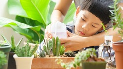 Mother teaching cute little Asian son to water variety of cactus in pots with watering bottle, surrounded by houseplants. Montessori, homeschool, Child development and botany gardening concept.