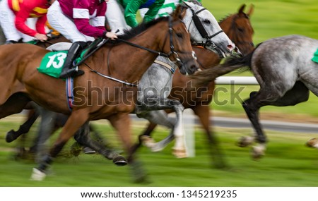 Motion blur horse racing action #1345219235