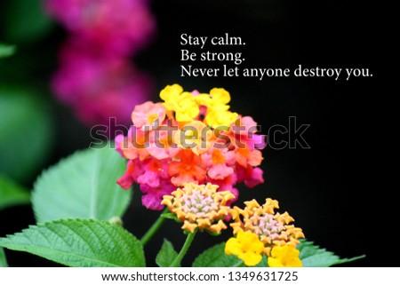Motivation wording with flower background #1349631725
