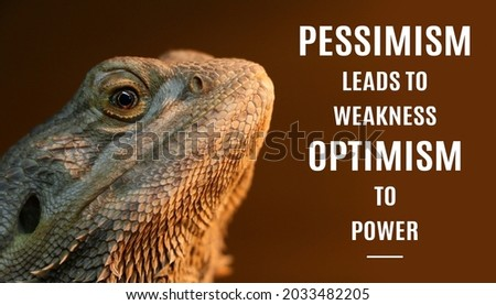 motivational inspirational positive Live support pessimism leads to weakness optimism to Power with the Chameleon and dark brown background Stockfoto ©