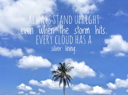 Motivational writing Always stand tall even though the storms always hit. Definitely Passing Storm. With coconut tree image and white cloud background against blue sky