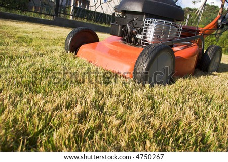 motor driven lawnmower on the turf
