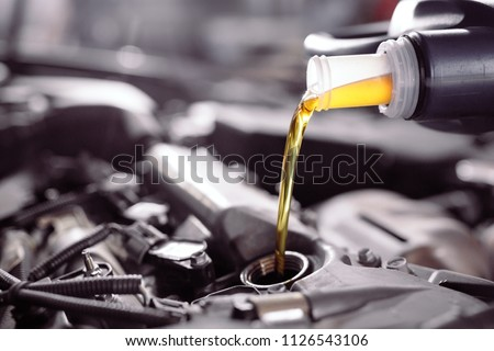 Motor oil pouring to car engine. #1126543106