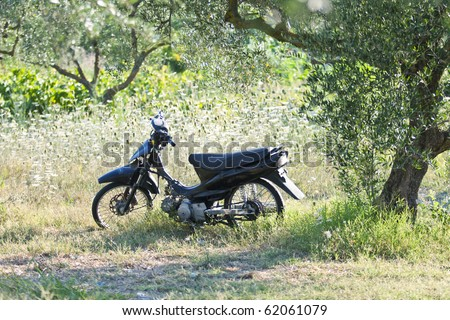 motorcycle sat in the grass and trees