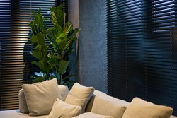Motorized wood blinds in the interior. A houseplant is near black wood blinds. Closeup on the large windows. Coulisse wooden slats 50mm wide. Venetian blinds closed in the living room.