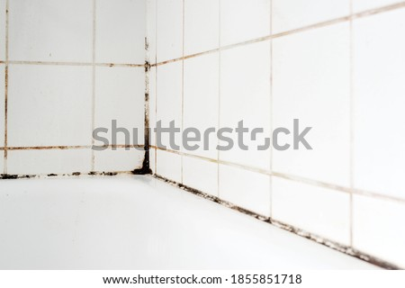 Mould on tiles in a bathroom Foto d'archivio ©