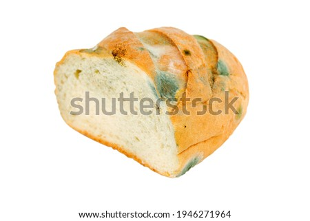 Mouldy bread on a white background. Expired pastries. Stock photo ©