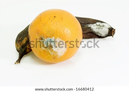 Mouldy fruits on bright background.