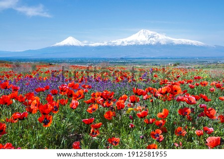 Mount Ararat (Turkey) at 5,137 m viewed from Yerevan, Armenia. This snow-capped dormant compound volcano consists of two major volcanic cones described in the Bible as the resting place of Noah's Ark.