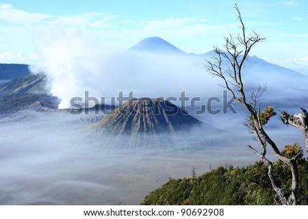 Mount Bromo, Semeru and Batuk sunrise view from Mount Penanjakan , Jawa Timur (JATIM), Indonesia