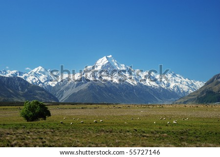 Mount Cook Great Scenic