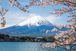 Mount Fuji with cherry blossom at Lake kawaguchiko in japan