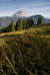 Mount Garibaldi, Garibaldi Provincial Park, British Columbia, Canada