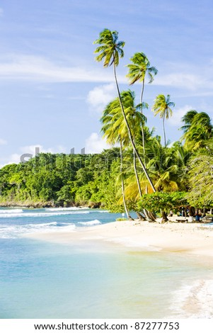 Mount Irvine Bay, Tobago