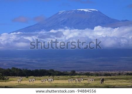 Mount Kilimanjaro on a beautiful morning, Tanzania, Africa