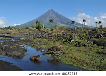 Mount Mayon Volcano in the province of Bicol, Philippines