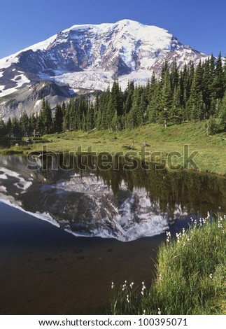 Mount Rainier along the Wonderland Trail in summer; Mount Rainier National Park, Washington State