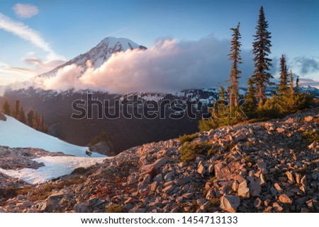 Mount Rainier towers over the surrounding mountains sitting at an elevation of 14,411 ft. It is considered to be one of the world's most dangerous volcanoes. Spring time, sunny day. Washington, USA #1454713133