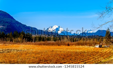 Mount Robie Reid on the left and  Mount Judge Howay on the right, viewed Sylvester Road over the Blueberry Fields near Mission, British Columbia, Canada under clear blue sky on a nice winter day #1345815524
