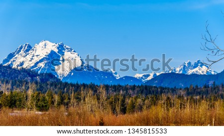 Mount Robie Reid on the left and  Mount Judge Howay on the right, viewed Sylvester Road over the Blueberry Fields near Mission, British Columbia, Canada under clear blue sky on a nice winter day #1345815533