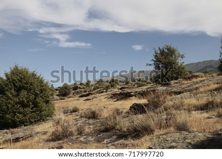 Mount with brown and beige vegetation